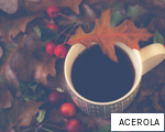 ACEROLA anagram