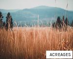 ACREAGES anagram