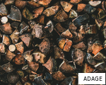ADAGE anagram