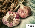 AIOLIS anagram