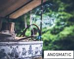 ANOSMATIC anagram