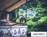ANOSMIC anagram