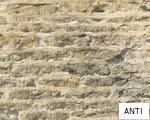ANTI anagram