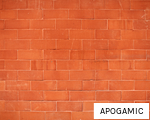 APOGAMIC anagram