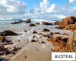AUSTRAL anagram