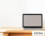 AZONAL anagram