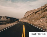 BATFISHES anagram
