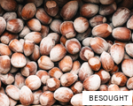 BESOUGHT anagram