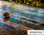 BRAGGING anagram