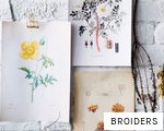 BROIDERS anagram