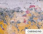 CABBAGING anagram