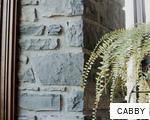 CABBY anagram
