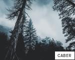 CABER anagram