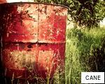 CANE anagram