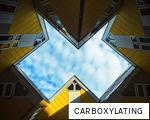 CARBOXYLATING anagram