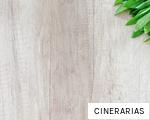 CINERARIAS anagram