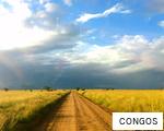 CONGOS anagram
