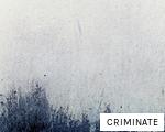CRIMINATE anagram