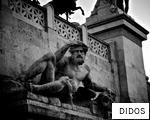 DIDOS anagram