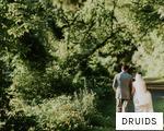 DRUIDS anagram