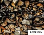 EXOERGIC anagram