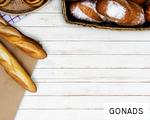 GONADS anagram