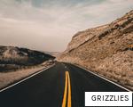 GRIZZLIES anagram