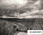 GUANINES anagram