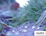 HAZES anagram