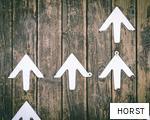 HORST anagram