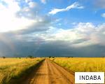 INDABA anagram