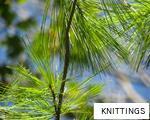 KNITTINGS anagram