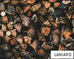 LANIARD anagram