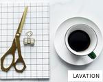 LAVATION anagram