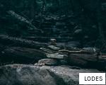 LODES anagram