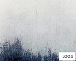 LOOS anagram