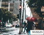 MIZZLES anagram