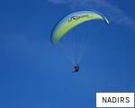 NADIRS anagram