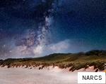 NARCS anagram