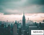 NERVES anagram