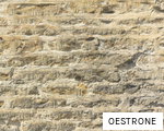 OESTRONE anagram