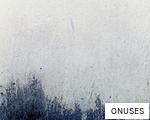 ONUSES anagram