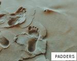 PADDERS anagram