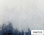 PANTOS anagram