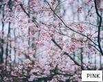 PINK anagram
