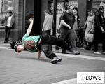 PLOWS anagram