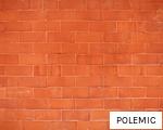 POLEMIC anagram