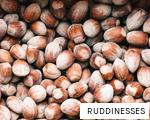 RUDDINESSES anagram