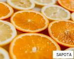 SAPOTA anagram