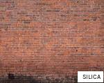 SILICA anagram